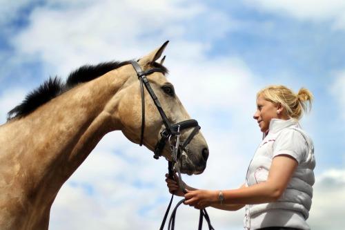Dublin_horse_show_preperations_max13