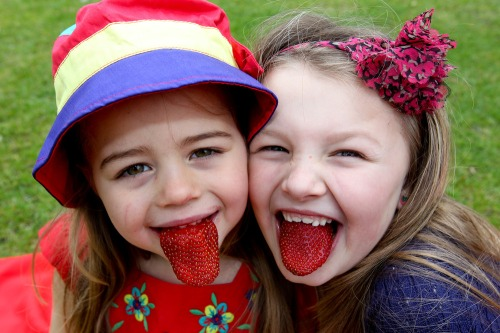 Supervalu_1st_irish_strawberries_mx-1
