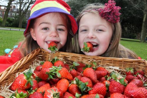 Supervalu_1st_irish_strawberries_mx-2