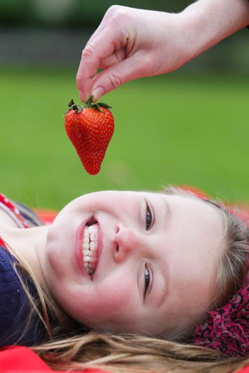 Supervalu_1st_irish_strawberries_mx-6