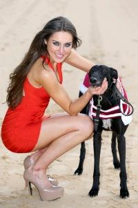 Irish Greyhound Board Signs New Three Year Derby Sponsorship Dea